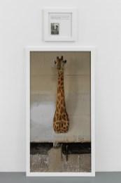 Sophie Calle, La Girafe, 2012 (c) Sophie Calle, ADAGP Paris, 2018, Courtesy Perrotin