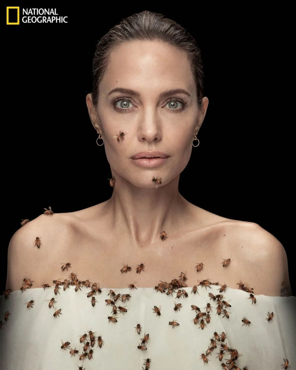 Angelina Jolie for World Bee Day 2021 © Dan Winters National Geographic