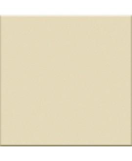 carreau de couleur mat ou brillant