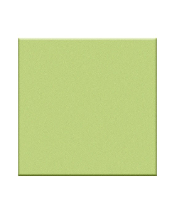 carrelage vert pistache mat de couleur