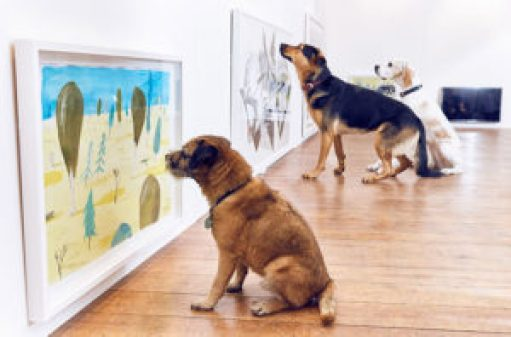 Art for dogs -exhibition-dominic-wilcox-london-12