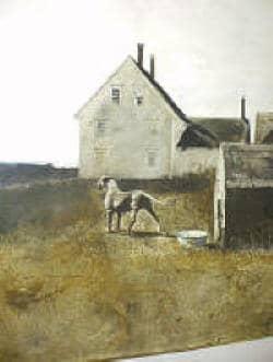 wyeth-1