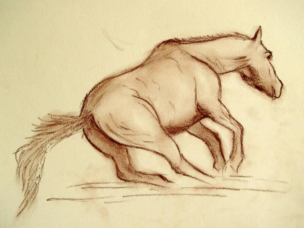 Christian Bruley - cheval en course fusain 20X30