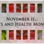 November Global Arts & Health Month
