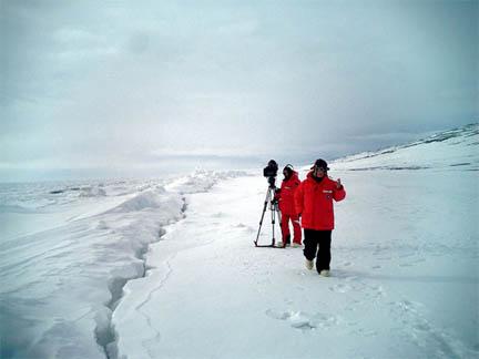 אנטארקטיקה, כמובן