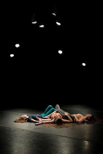 The last image of Moment Marigold. Photo: Ian Douglas