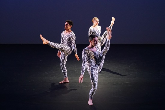 Mark Morris's A Forest. (L to R): Domingo Estrada, Jr., Brian Lawson, Rita Donahue. Photo: Anu Collier