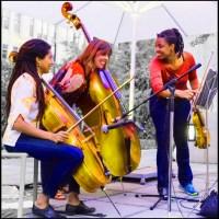 MCA-Chicago's Terrace concerts, acing outdoor presentation