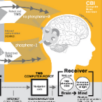 A First: Brain-To-Brain Communication