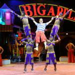 Bankrupt Big Apple Circus For Sale