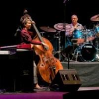 The Spring Quartet In Portland