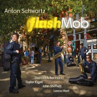CD Recommendation: Anton Schwartz