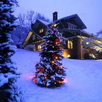 Merry Christmas, Joyeux Noel, Frohe Weihnachten, Feliz Navidad, Christmas Alegre, Lystig Jul, メリークリスマス, Natale Allegro, 圣诞快乐, Καλά Χριστούγεννα, 즐거운 성탄, C Pождеством Xристовым