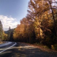 Fall Photo Plus Video & Monday Recommendation: Scott Robinson