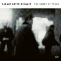 Recent Listening: Django Bates Trio