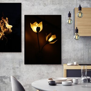 Pack 2 Tableaux d'art The light