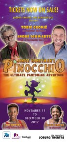 Janice Honeyman's 30th annual festive season pantomime production, 2017's Pinocchio.