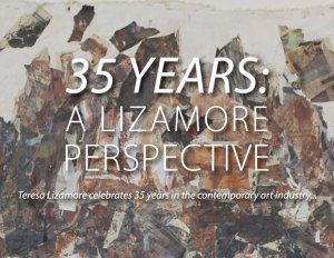 35 Years: a Lizamore Perspective