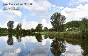 Jazz Celebration at Nirox
