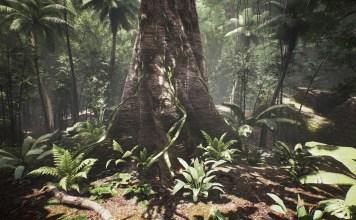 A still from the groundbreaking VR film Tree