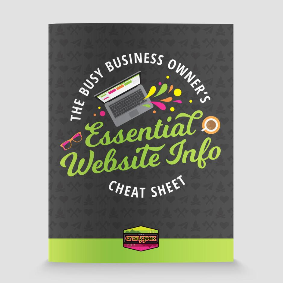 The Busy Business Owner's Essential Website Info Cheat Sheet