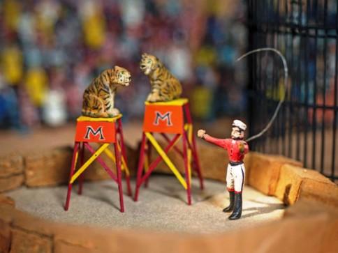 TigerTamer, Morris