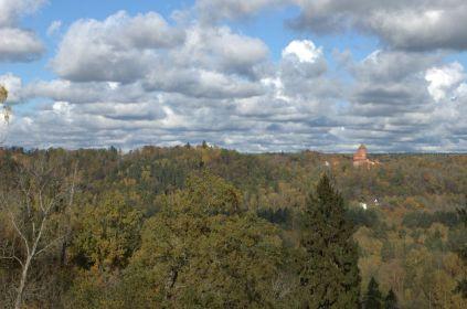 Рундальский замок в далеке