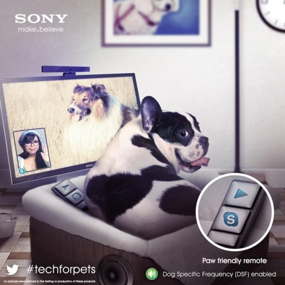 doggie-remote