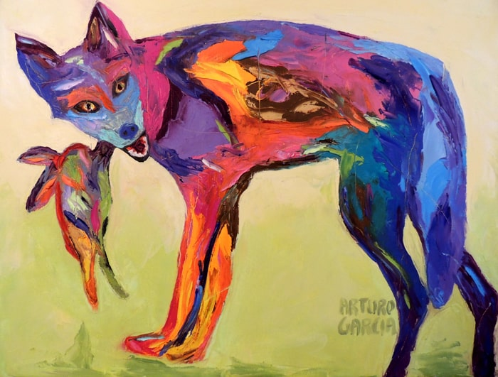 The Playful Coyote