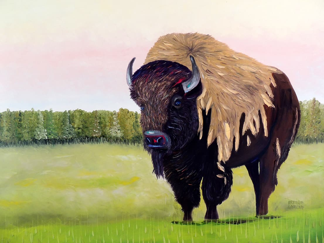"""King of the Plain. Oil. 48""""X36"""" SOLD."""