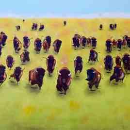 Standing Rock Soldiers