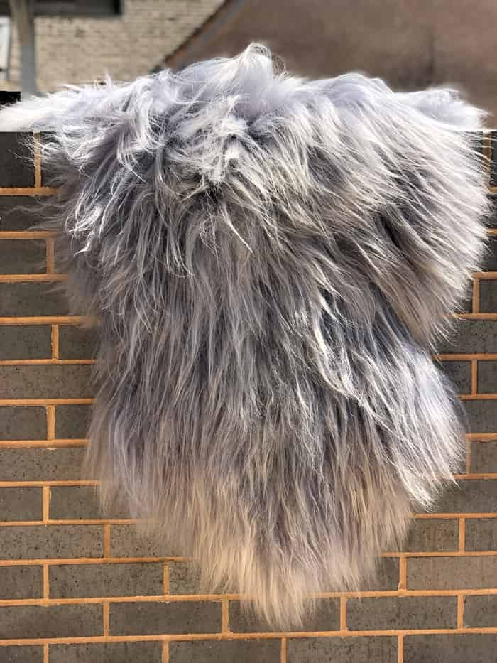 Grey Breeze Icelandic Sheepskins - Soft, fluffy in natural colour