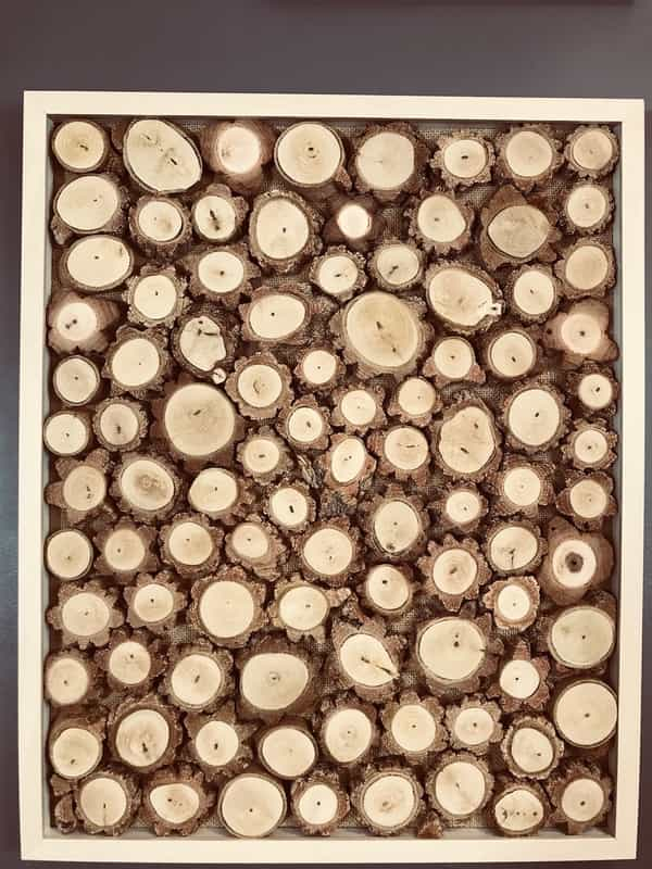 Wall Frame Picture Decoration Cork Wood Slices