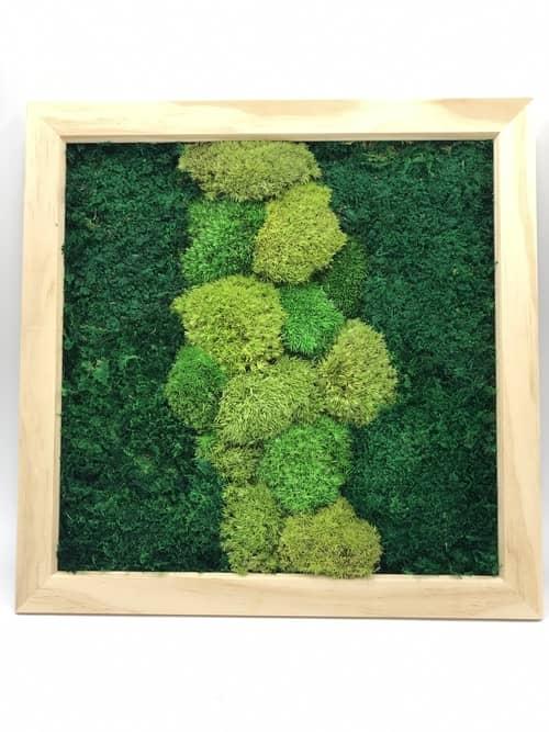 Wall Garden - Flat & Cushion Moss Wall Art Frame Decoration