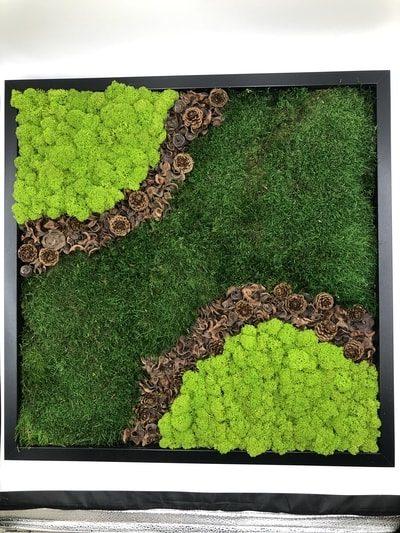 Finland Reindeer & Flat composition of moss