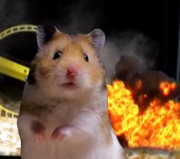 Hamster 24 Pet Parody by Keith Hopkin