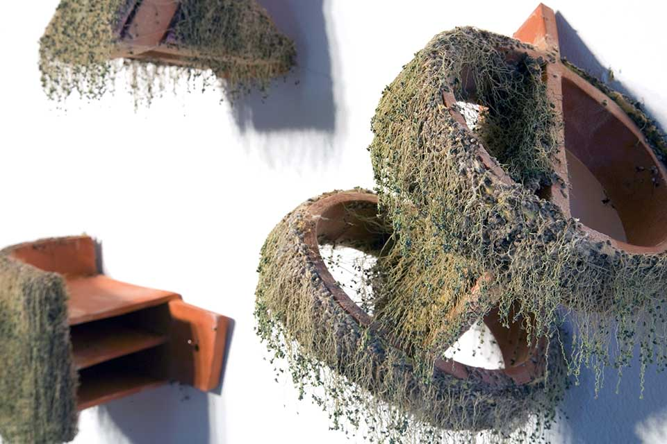 wall sculpture with plants