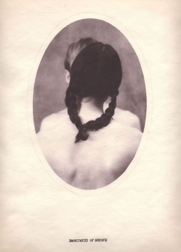 Dan Estabrook