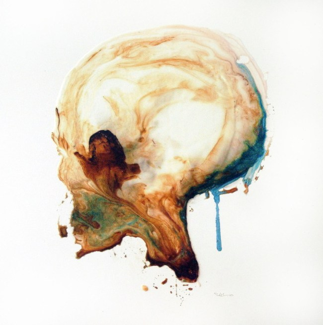 Portrait of a skull - Steve Salo