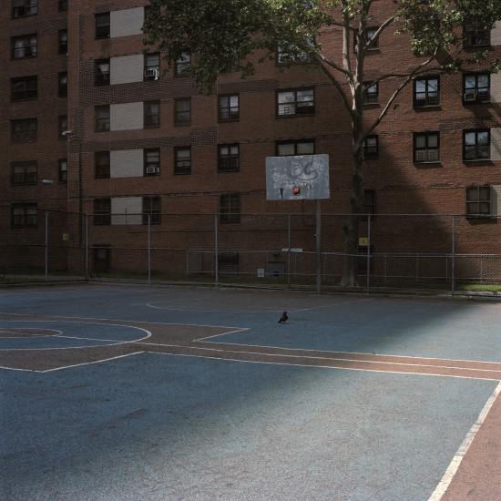Ward Roberts - Courts 17