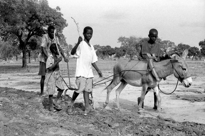 Alberico Mattei - Burkina Faso - Orfanotrofio di Loumbila