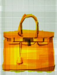 Mark Khaisman - Birkin Bag Glimpse, 2013