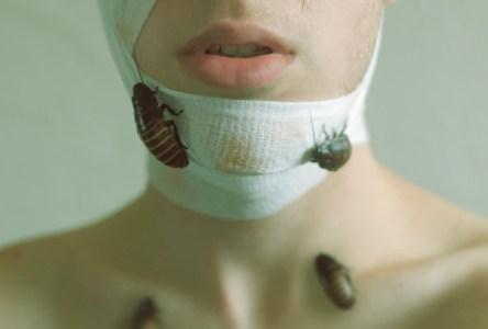Kyle Thompson - Plague I (2014)