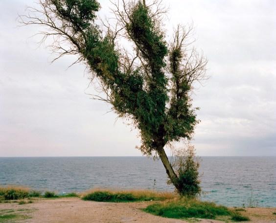 Efkaliptus - Athens I hear you ©Georges Salameh