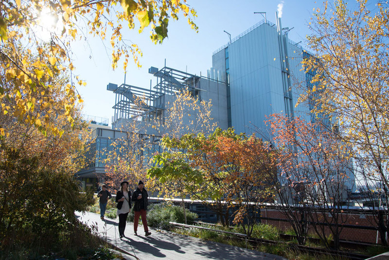 A view of the building from the High Line, Photo by Timothy Schenck