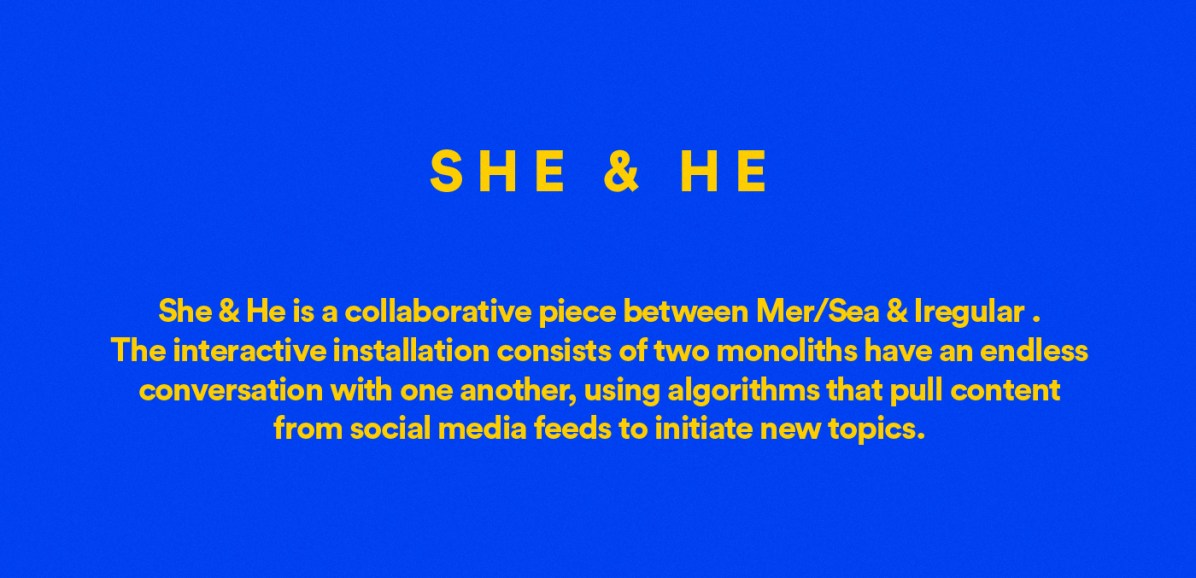 She & He - A robotic love story