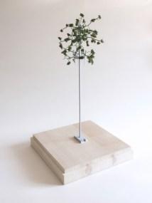 Superflora / Luca Coclite