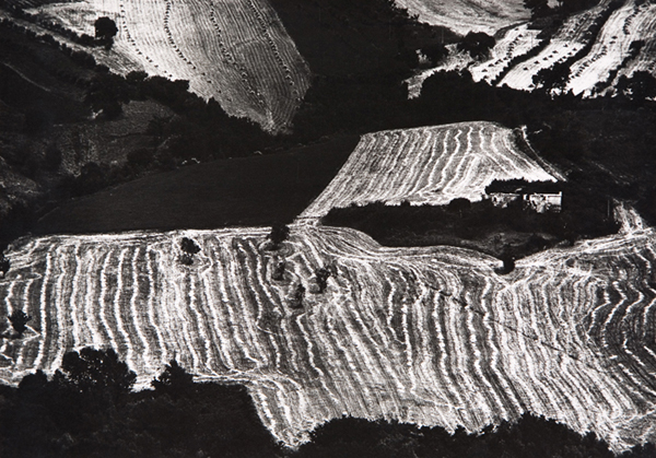 Mario Giacomelli, 1925-2000, Paesaggio, 1982, gelatina bromuro d'argento, Galleria civica di Modena