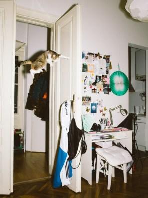 Jumping Cats / Daniel Gebhart de Koekkoek