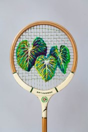 Philodendron Racket